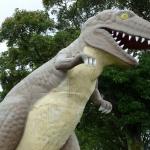 鹿児島県の桜島、恐竜公園にて